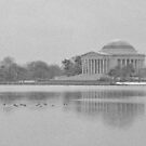 Jefferson Memorial and Tidal Basin - Washington D.C. by Matsumoto