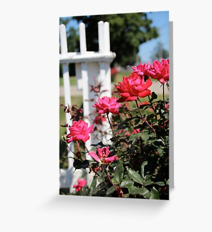 Picket Greeting Card