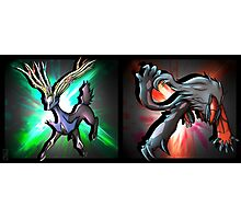 Pokemon Xerneas and Yveltal  Photographic Print