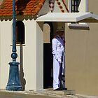 The Palace Guard by Fara