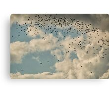 The Birds II Canvas Print
