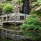 Alfred Nicholas Gardens - Bridge & Waterfall by Frank Moroni