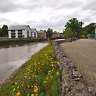 Totnes Riverbank by kalaryder