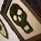 Moss Art - Life Creeps by Linda Sharman