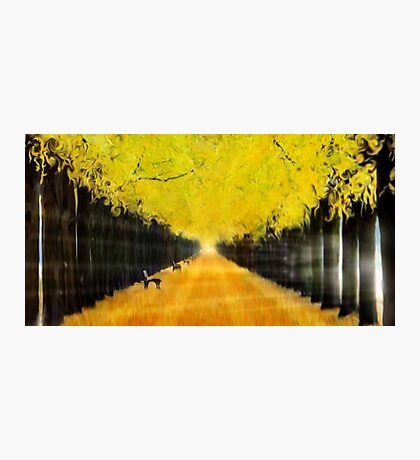 Autumn Dream Photographic Print