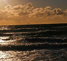 Sky & Water Pt. II by JD Delgado