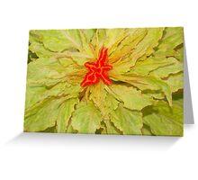 Cockscomb flower Greeting Card