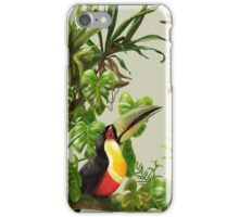 Toucans and bromeliads - canvas background iPhone Case/Skin