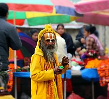 A holy man of India by johnkimages