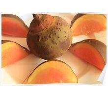 Sapote Fruit Poster