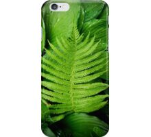 fern on top iPhone Case/Skin