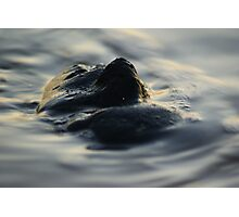 Black Ice face series (7) 2014 Photographic Print