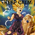 Don't Keep Calm, Go Super Saiyan (6) by LagrangeMulti