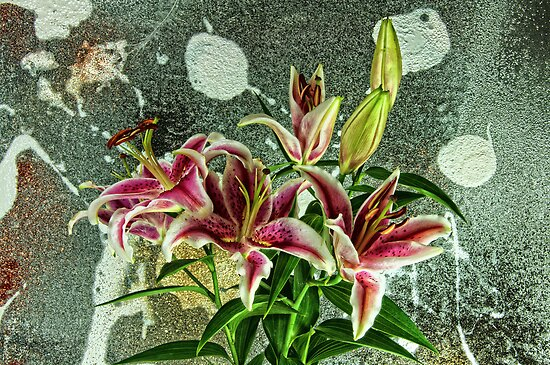 The Painting & the Lillies by Karo / Caroline Evans (Caux-Evans)