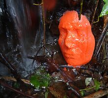 RED Ice Face Sculpture series (1) 2014 by Kathryn Anne Trussler