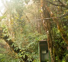 Toilet in mountain forest by VincentD7