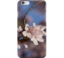 Pink Spring - Sunlit Blossoms and Blue Sky, Vertical iPhone Case/Skin