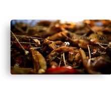 Hot N Spicy! Canvas Print