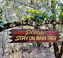 Stay on the Path by Martha Sherman