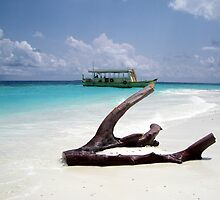 Maldives by DavyRedbone
