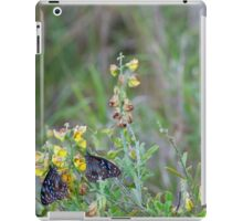 Butterflies In Unison  iPad Case/Skin