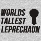 Worlds Tallest Leprechaun by Alan Craker