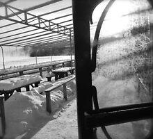 Winterland/ Frozen Patio...CANADIAN CULTURE CAPTURED by inspiREDmaple