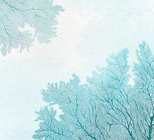 Blue coral by randoms