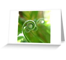 Natures Beauty Greeting Card