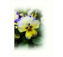 Delicate spring flower Art Print