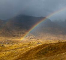 Rainbow in Glen Affric by Sue Arber