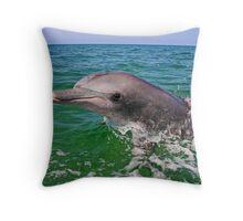 Nikky the dolphin Throw Pillow