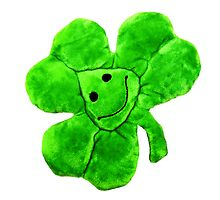 Funny Irish Shamrock by MMPhotographyUK