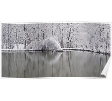 Icy Pond Poster