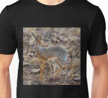 Dikdik, Serengeti, Tanzania.  Unisex T-Shirt