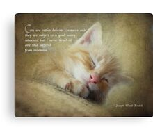 Ode to a sleepy cat Canvas Print