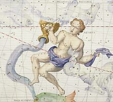 Constellation of Aquarius by Bridgeman Art Library