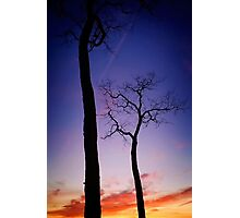 Silhouettes against a sunset Photographic Print