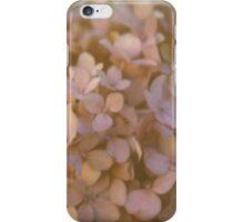 Pink Hydrangea Polaroid iPhone Case/Skin