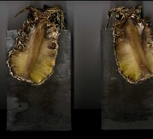 Rotten Pineapple encased in Resin  by Abilittlewood