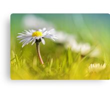 Absolutely love....  Canvas Print