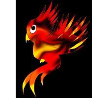 Cute Phoenix Photographic Print