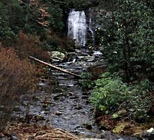Waterfall in the Mountain by PicsbyJody