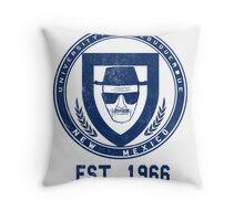 Albuquerque University Chemistry Dept. Throw Pillow