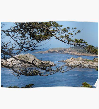 Pebble Beach Landscape Poster