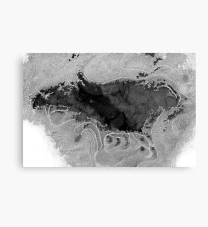 Freezing Stream B&W Canvas Print