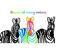 Stripes of many colors Photographic Print