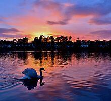 Sunset over Roath Park Lake, Cardiff by Paula J James