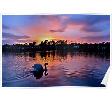 Sunset over Roath Park Lake, Cardiff Poster