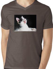 Yawning Kitten Mens V-Neck T-Shirt